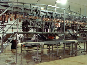 Poultry Industry Conveyor Systems
